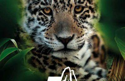 LE 12 AVRIL 2019, le Parc Zoologique de Paris aura 5 ans.
