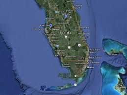 Florida vines