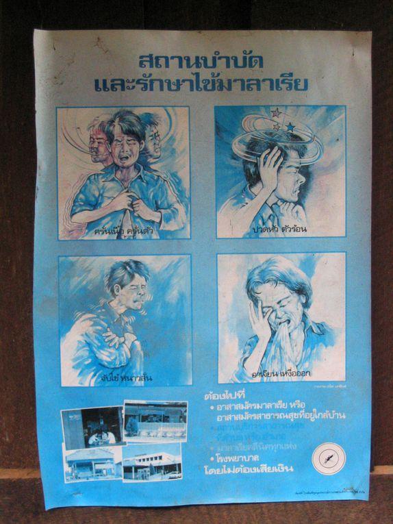 Thailande ~ Etape 4 ~ Chiang Mai