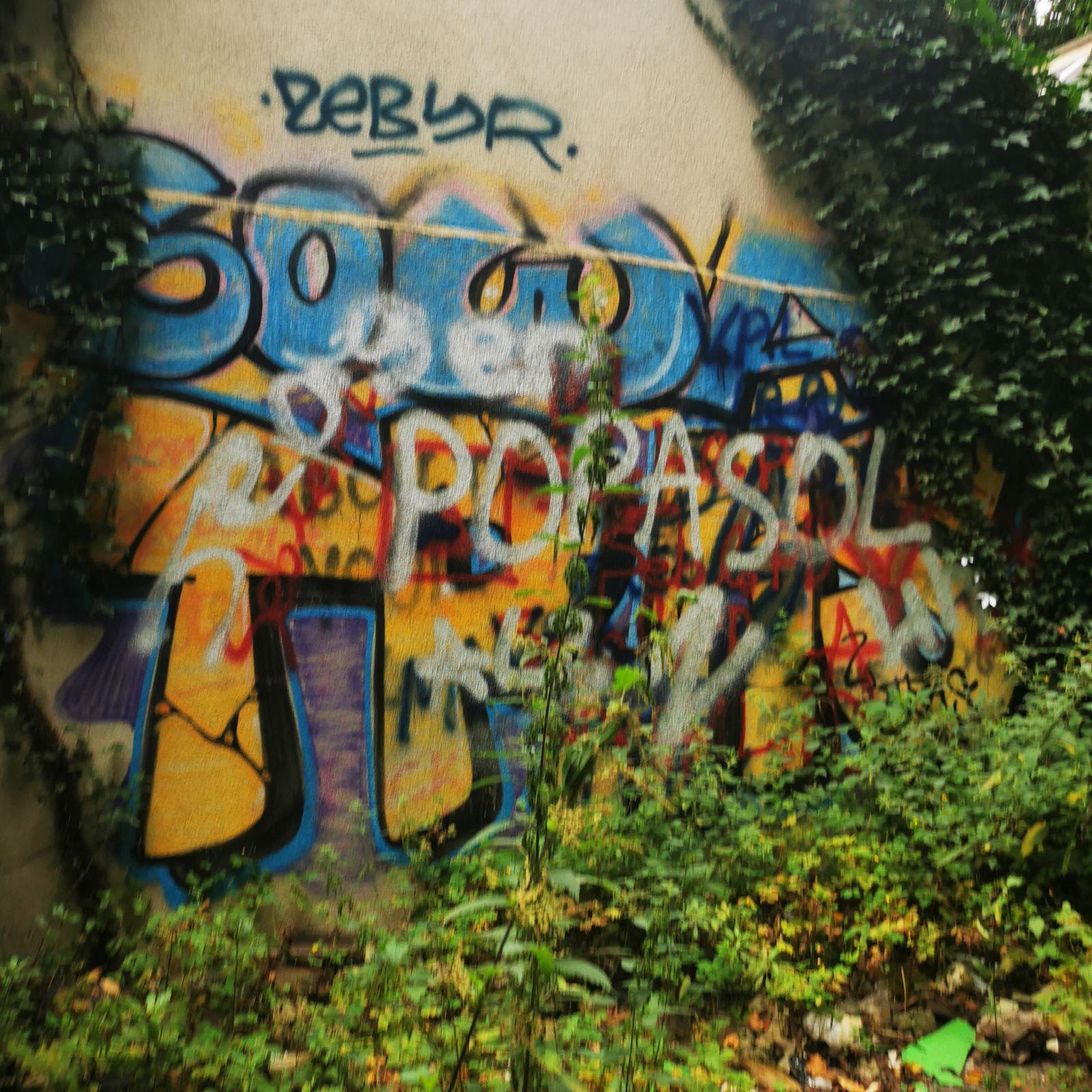 Goussainville, le vieux pays... Entre street art et urbex
