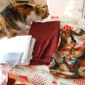 chat m'aide pour mes achats tissus - crea.vlgomez.photographe et bricoleuse touche à tout.over-blog.com
