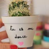 LE POT A MESSAGE ♥ SUCCULOVE # 5 ♥ ~ NOUF IN WONDERLAND