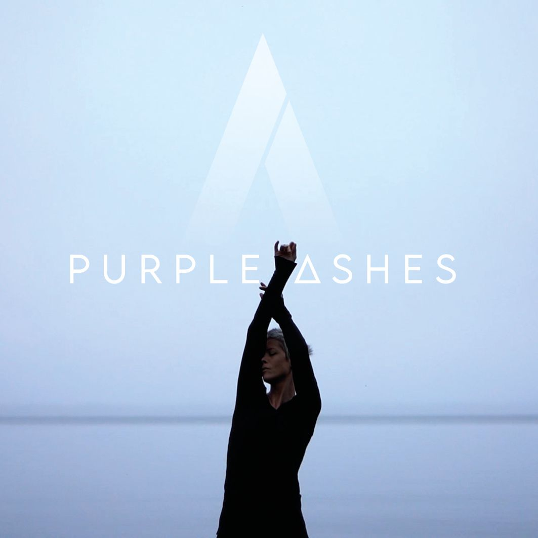 Purple Ashes, No Buzz Today