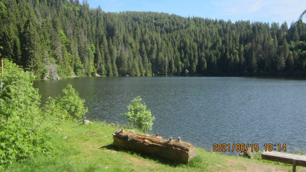 Lacs Vert et Forlet (Truites)  Gazon du Faing