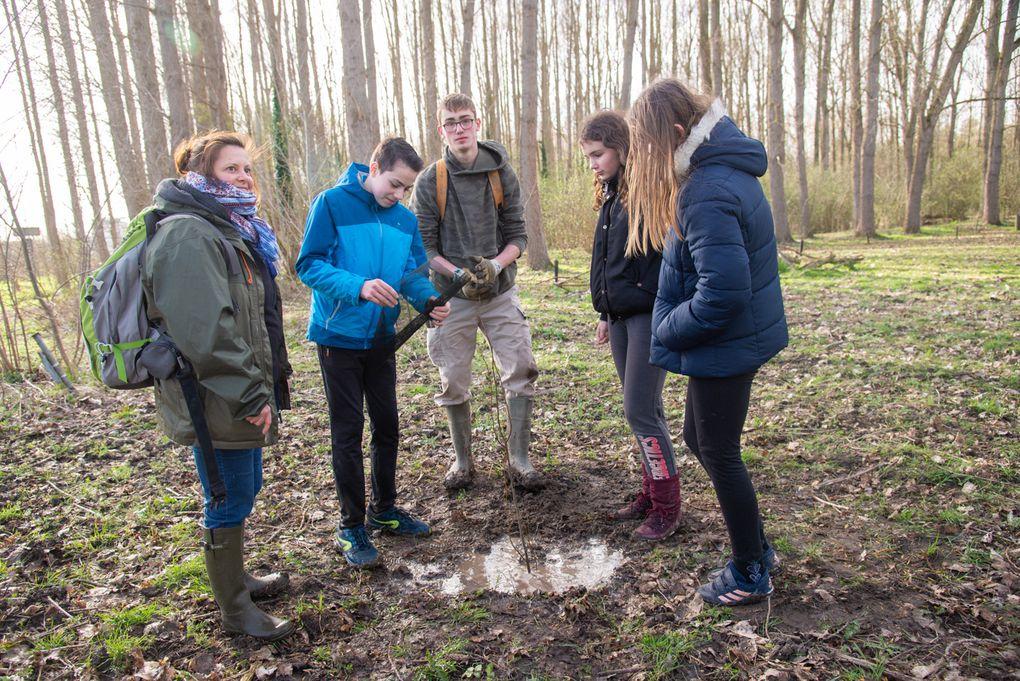 RSC Plantation d'arbres dans le cadre du projet «Plantons le décor»