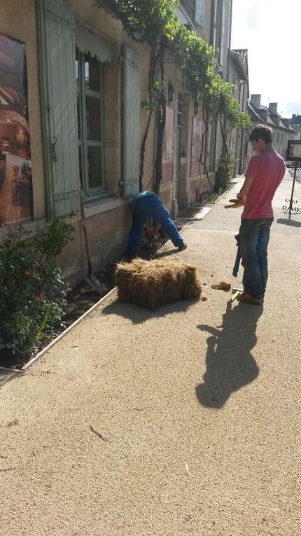 Mise en place des bottes de paille en façade des Orangeries (9 juillet)