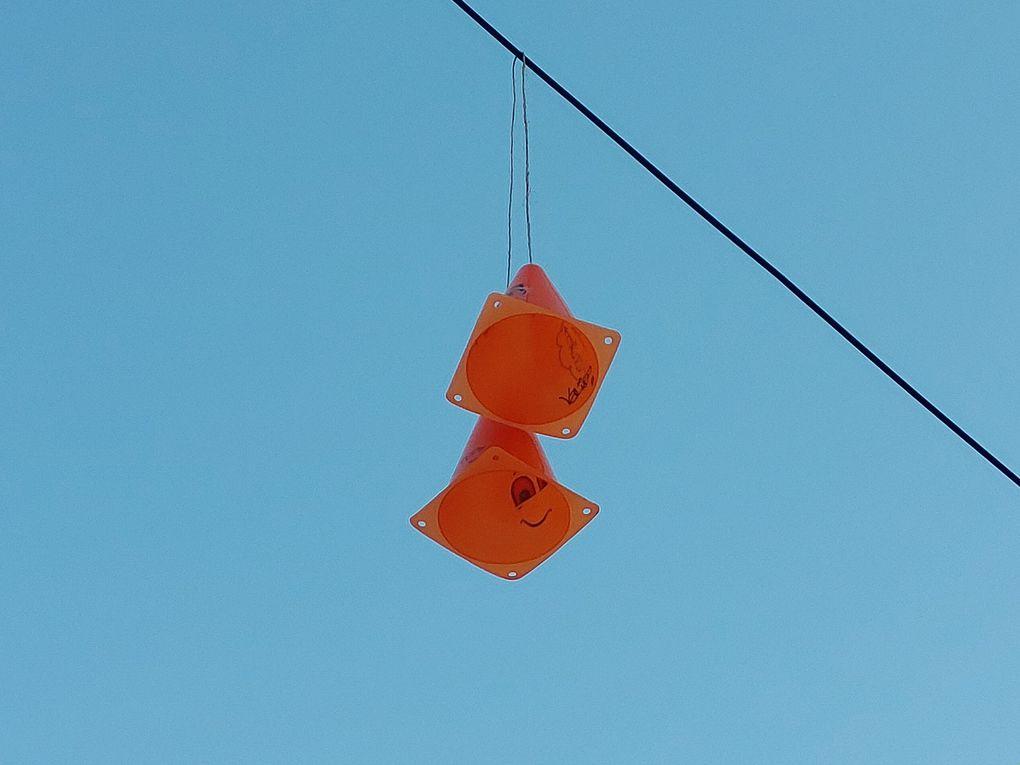 Des cônes se retrouvent suspendus sur un fil électrique.