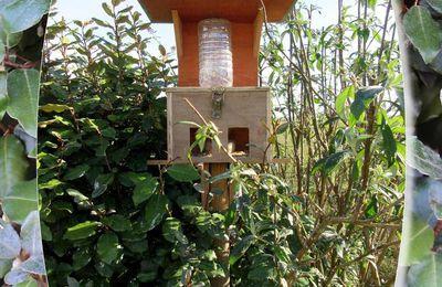 Mangeoires réserve graines pour oiseaux...