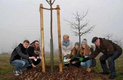 Nun schon 29 Baumarten am Veitshöchheimer Jahresbaumweg - Marianne und Gerd Mucha sponserten eine Winter-Linde, den Baum des Jahres 2016