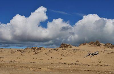 Oléron. La plage de Grand-village. La Giraudière, été 2020.