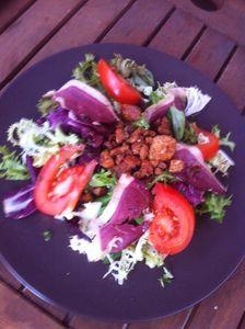 Salade gourmande son mélange du printemps , ses grattons de canard ses lamelles de canard séchées avec sa vinaigrette de vinaigre de cidre bio .