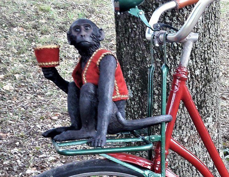 Et le vélo de Fanny Pour accompagner les Triporteur d'Antoine...
