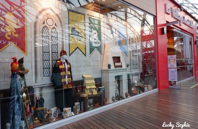 Boutique Harry Potter au Village Joué Club Lyon Confluence