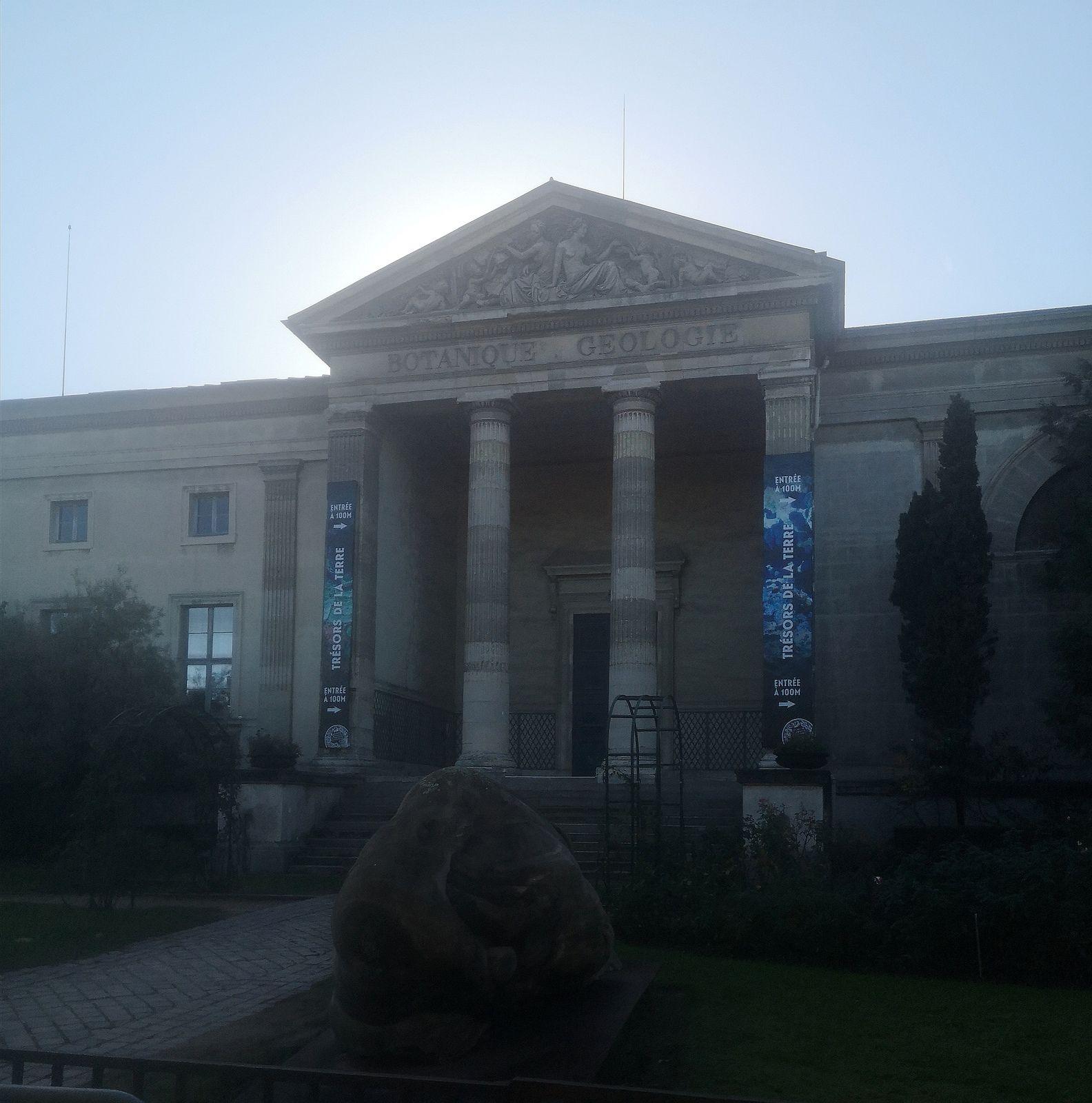 Galerie de paléontologie du jardin des Plantes. Paris.