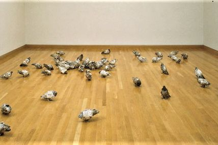 Pigeons - Kathryn Spence