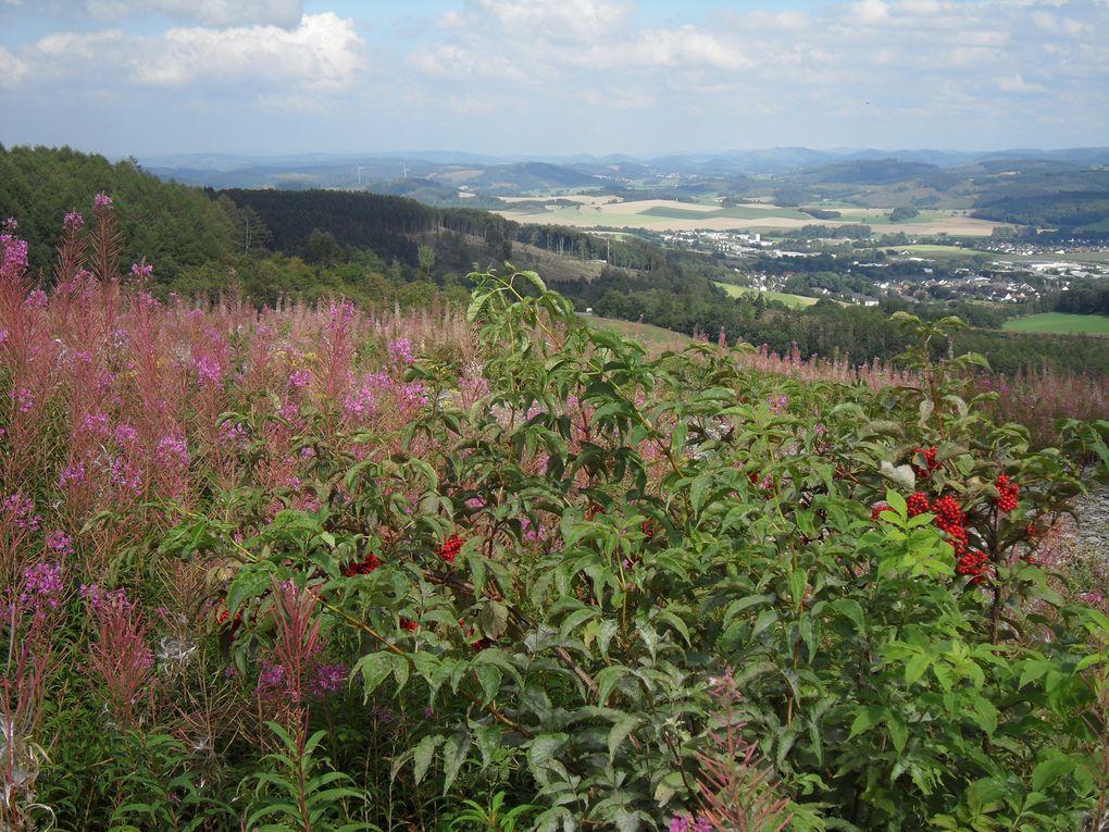 Bavière, Rhénanie, Sauerland... et un bout de Gruyère...