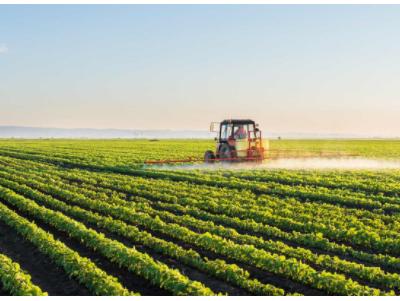 Les cultures GM augmentent-elles l'utilisation des pesticides ?
