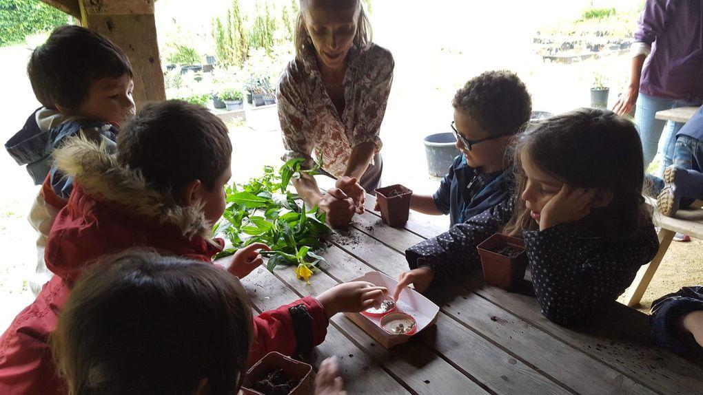 MS Visite du parc botanique de Haute Bretagne mardi 12 juin