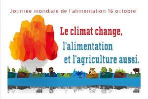 16 Octobre| Journée mondiale de l'alimentation !