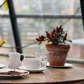 Nos 6 astuces pour soigner votre atmosphère d'hiver