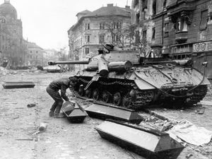 1956, Budapest, la Révolution.