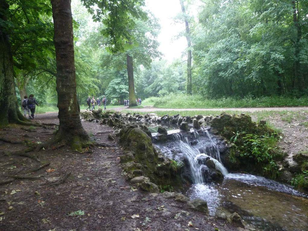 Marche Nordique au Bois de Vincennes, 8,23 km.