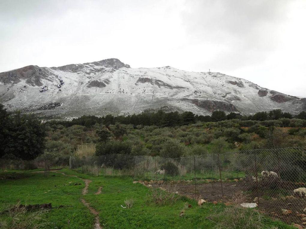Capodanno con la neve Palermo, un anno fa: l'ultimo con Tatà