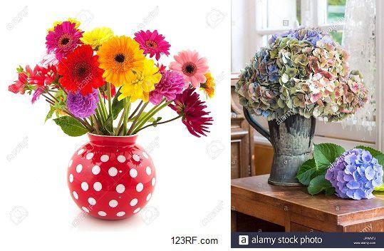 Bouquets de fleurs, Lenaïg
