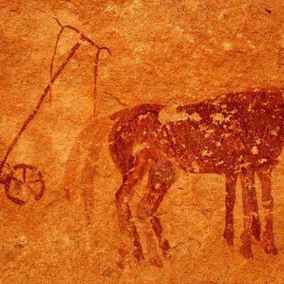 Comment l'agriculture néolithique a semé les graines des inégalités modernes il y a 10 000 ans (par James Suzman)