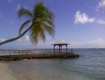 Croisière dans les Caraïbes...