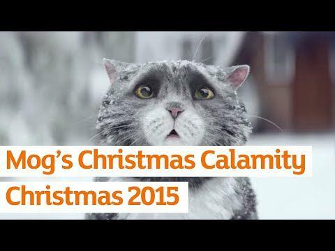 Mog, le chat maladroit de Noël !