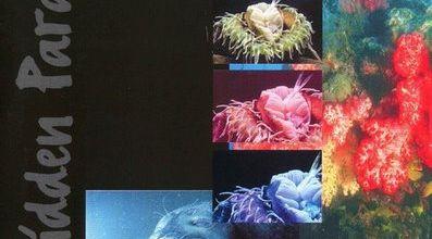 Tiësto compilation: Forbidden Paradise 3,4,5,6,7