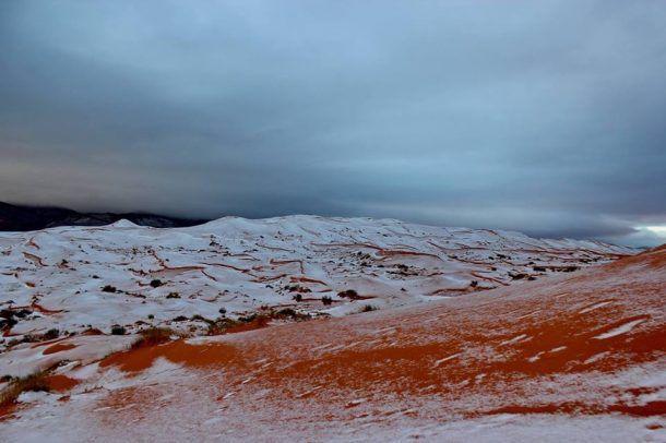 Algérie. Il a neigé dans le désert du Sahara… La première fois depuis 37 ans !