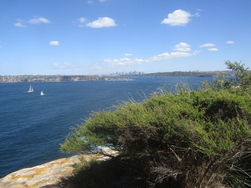 23 - Ballade de Manly à North Head