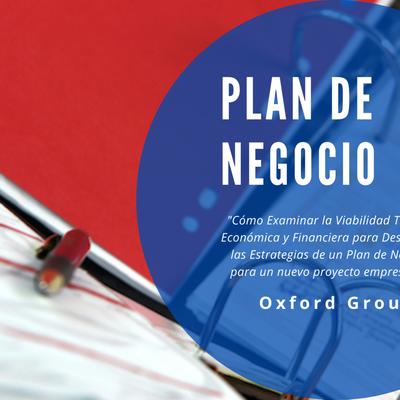 ¿Cómo elaborar un plan de negocios?                                    Plan de Negocio