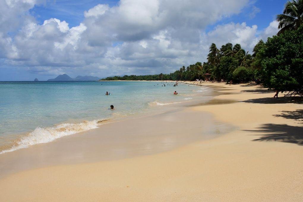 Album - Martinique