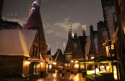 Fin de la visite ! The Wizarding World of Harry Potter