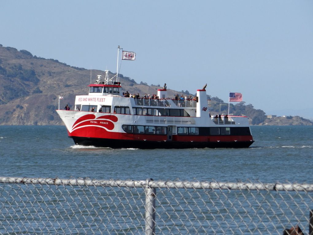 ROYAL PRINCE , dans la baie de SAn Francisco (USA) le 11 octobre 2018