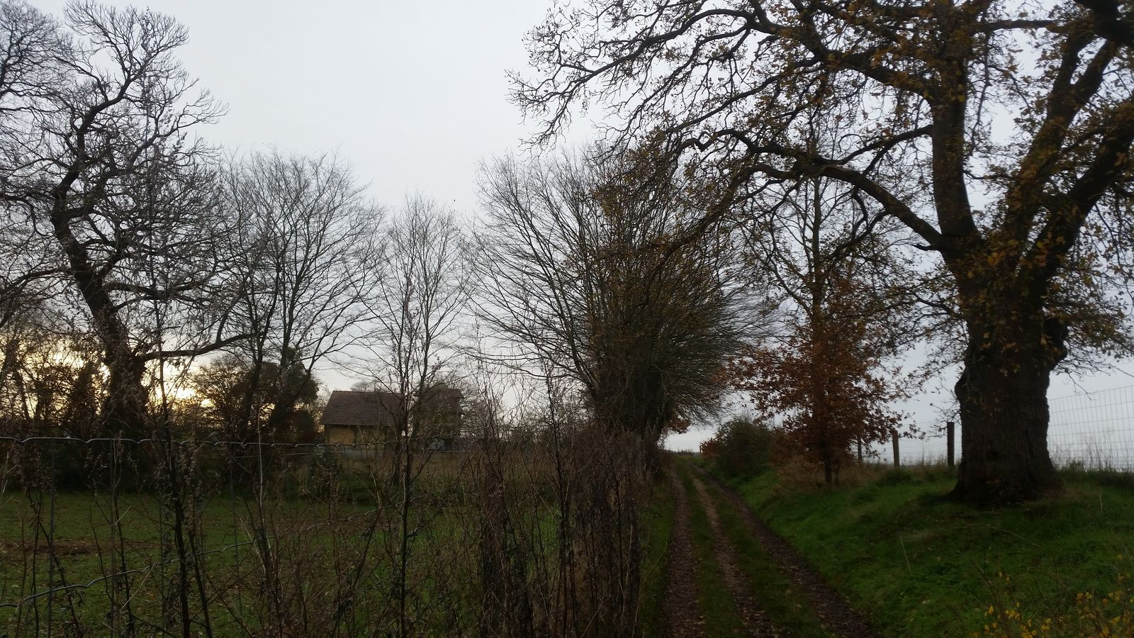 Le reliquat du Chemin Neuf à Hautot-sur-Seine