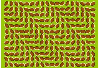 Humour... une illusion d'optique amusante