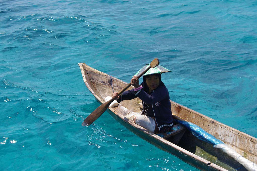 Indonésie à Singapour. Tanimbar, Banda, Wakatobi, Flores, Lombok, bali, Riau Island, Singapour.