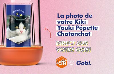 La gourde Gobi à l'image de son chat en collaboration solidaire avec la SPA