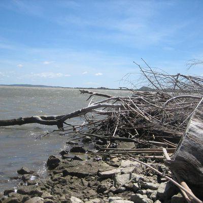 Histoires de littoral