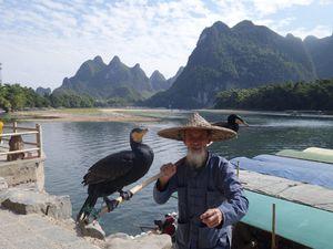 Pèches aux Cormorans et billets de 20 Yuan