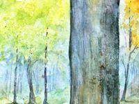 Portraits d'arbres