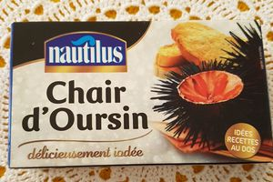 Chair d'oursin