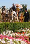 CIAT Venaria Reale, un spectacle royal