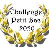 Challenge Petit Bac 2020... Qui veut jouer?