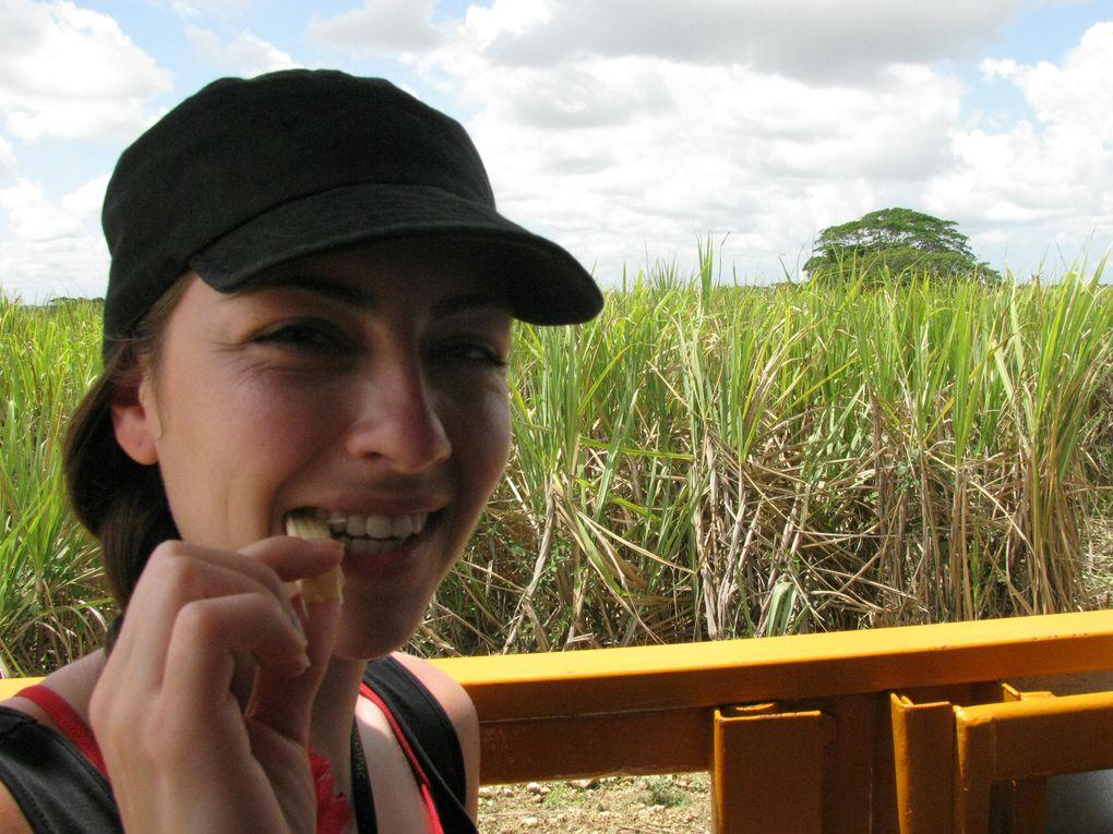 Mai 2011 République Dominicaine!