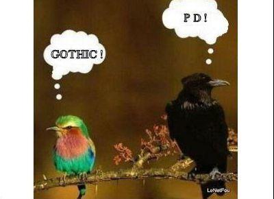 Humour.....